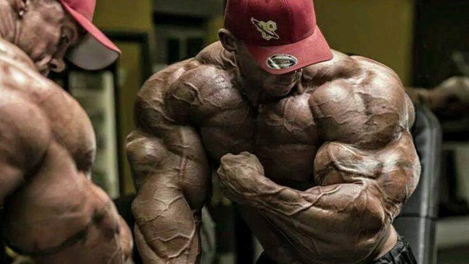 Bodybuilding Motivation – No Limits 2016