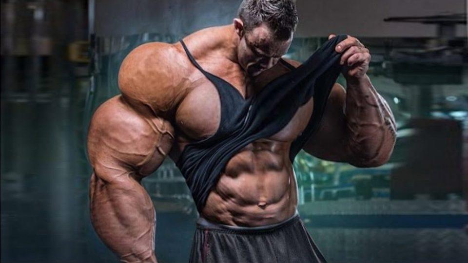 Bodybuilding Motivation – The Lion Attitude (2016)