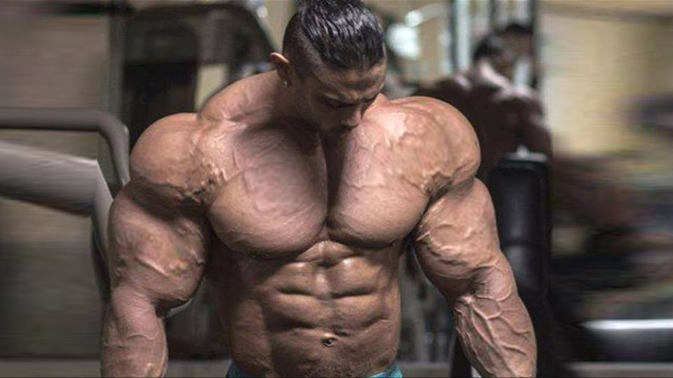 Bodybuilding Motivation – The Beast Unleashed (2017)